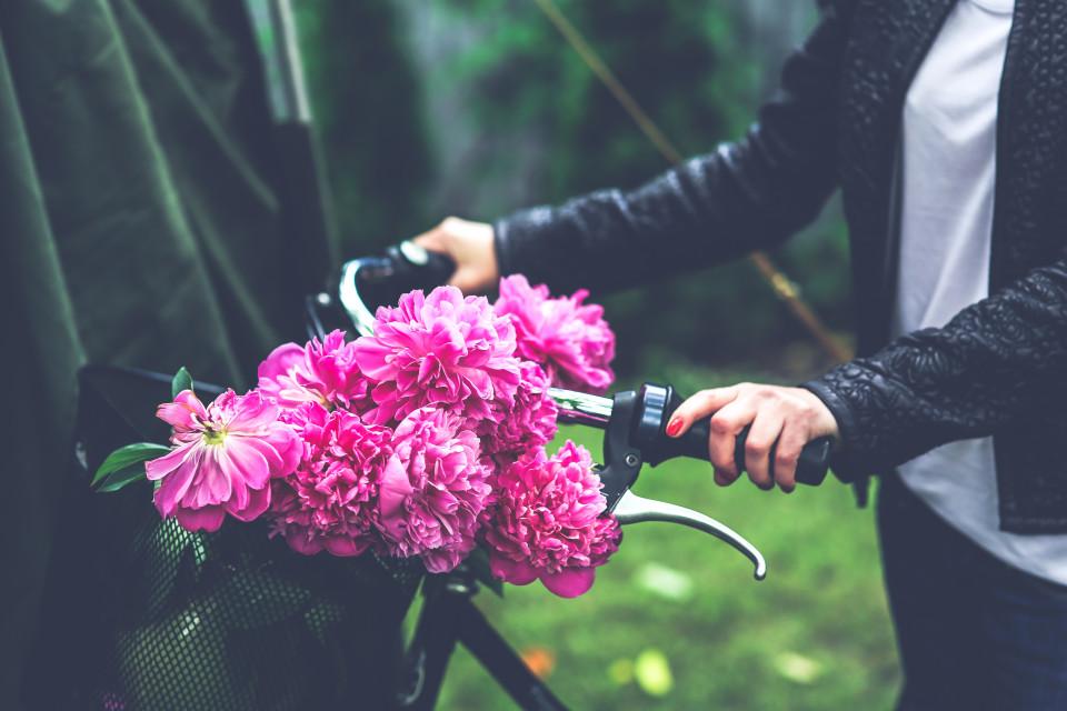 kaboompics.com_Bike with flower basket
